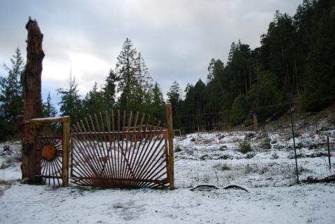 The sun gate